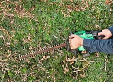 Hedge Trimming Whangarei